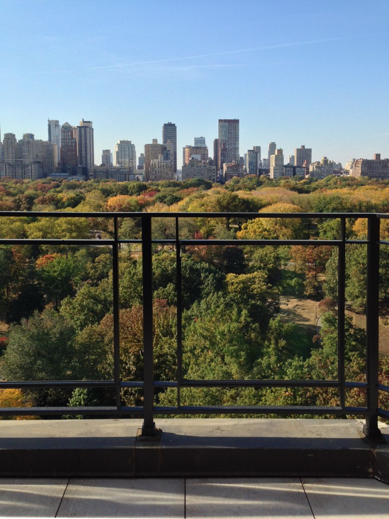 Art on Central Park - Terrace Railing with Ultra-Transparent Glass overlooking Fifth Avenue and Central Park